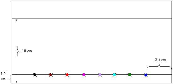 Ejemplo de una cromatografía en papel