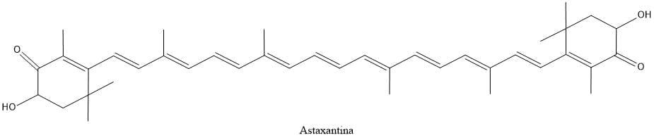 Estructura de la astaxantina