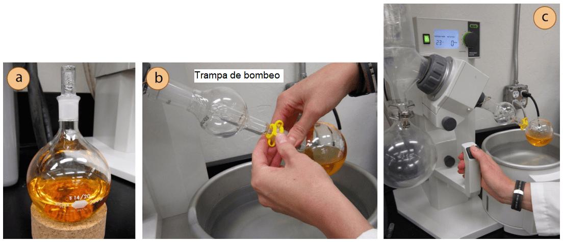 Colocación muestra evaporador rotativo