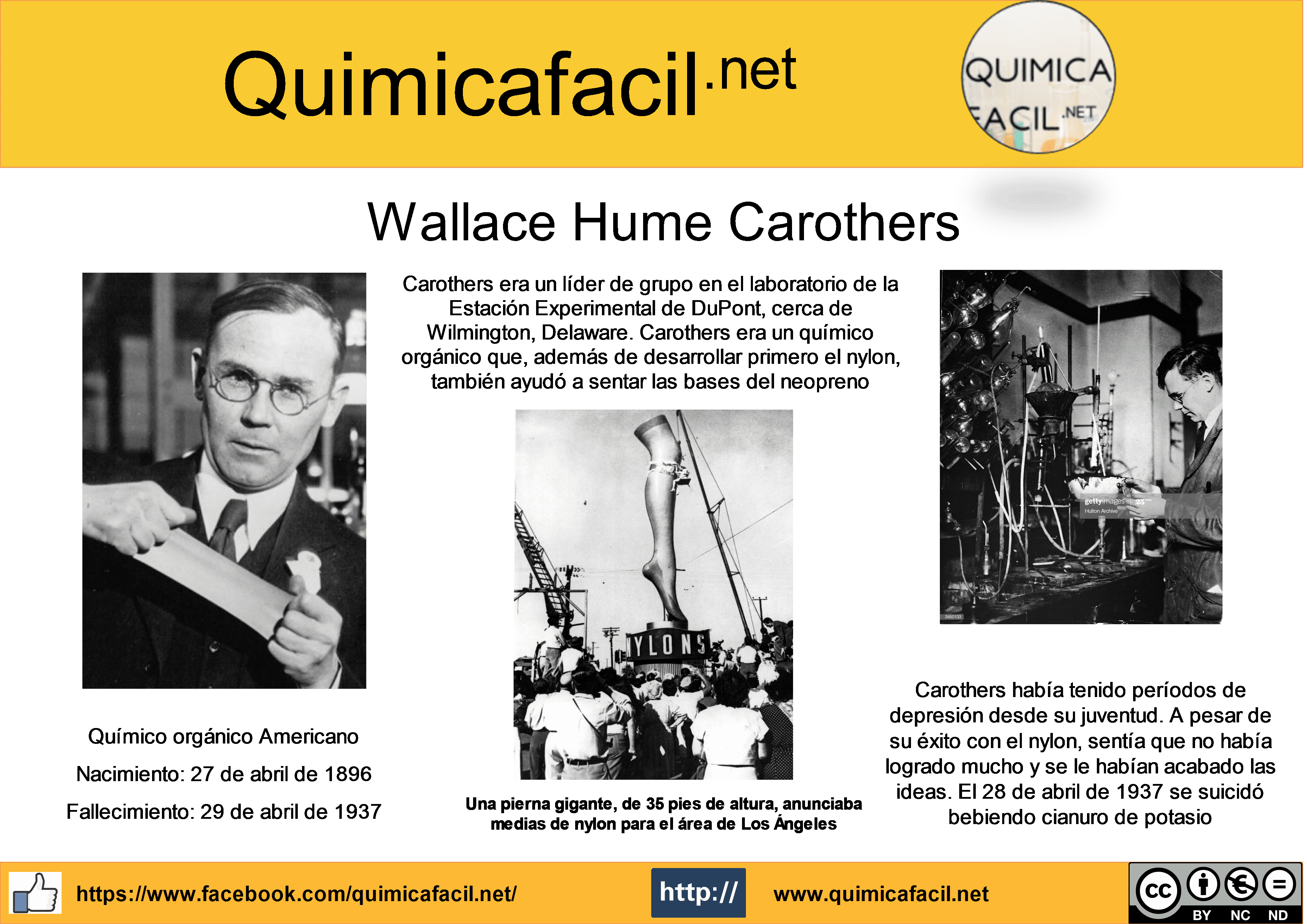 Infografía Wallace Carothers