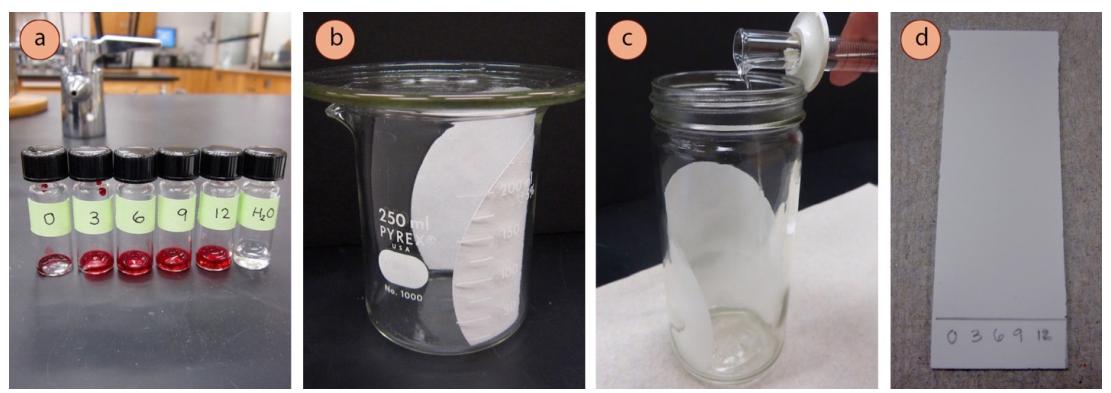TLC hecha con un vaso de precipitados y un vidrio de reloj, c) Adición de eluyente a una cámara de TLC, d) Placa preparada