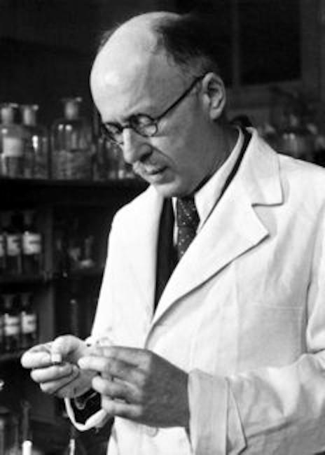 Leopold Ružička (1887 – 1976)