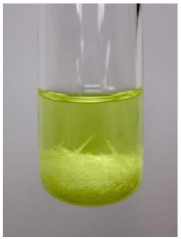 Figura 4: Sólido amarillo (benzil) en contacto con etanol frío.