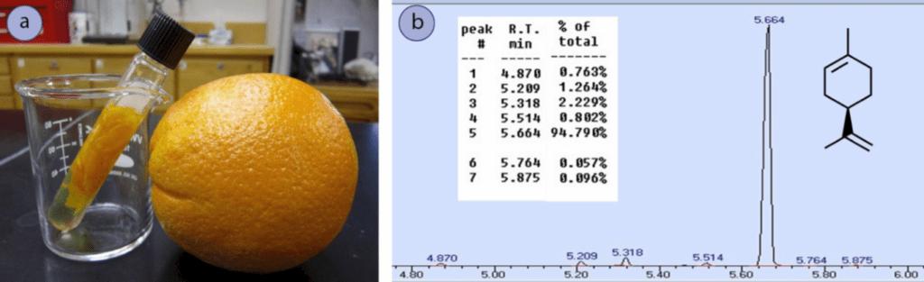 Figura 2: a) Corteza de naranja extraída en diclorometano, b) Espectro de cromatografía del aceite de naranja.